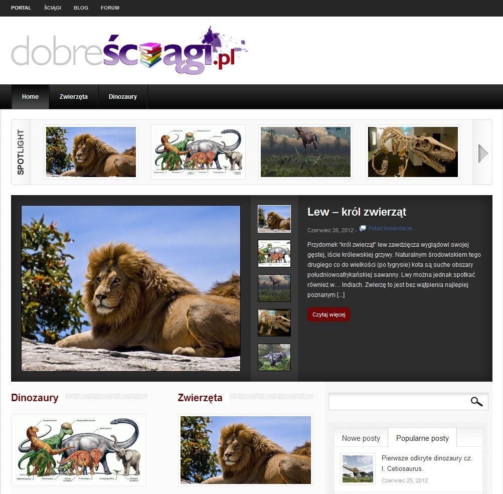 Portal DobreSciagi.pl